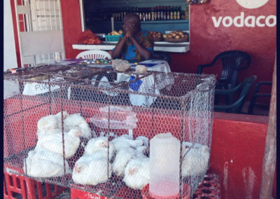 chickens-and-vodacom