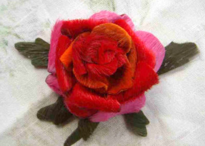 pink-and-red-rose